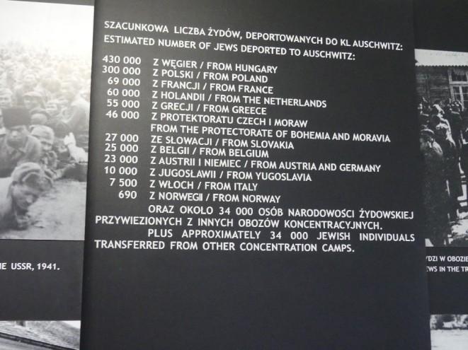 P1000535