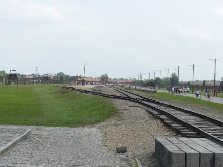 P1000598