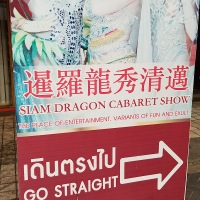 Ladyboy show promotional poster. Go straight?😜