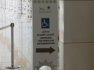 I assume they mean disabled?